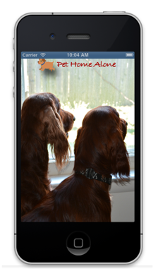 Get The Pet Home Alone App TODAY!