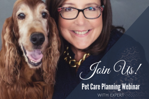 pet care planning, Debra Vey Voda-Hamilton