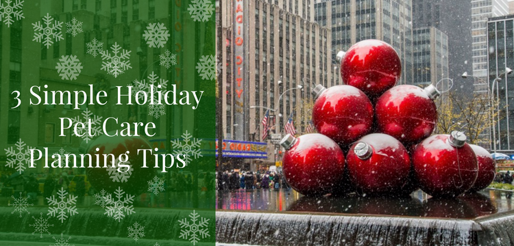 Holiday Pet Care Planning Tips