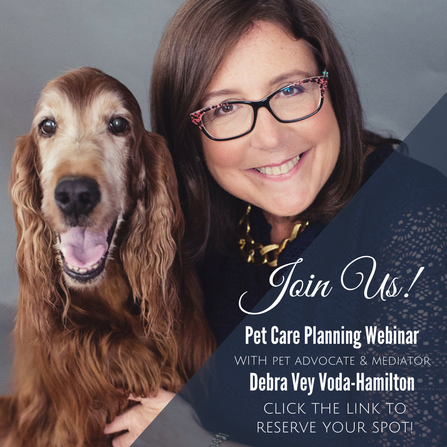 Spring Has Sprung – Does Your Pet Have A MAAP Plan?