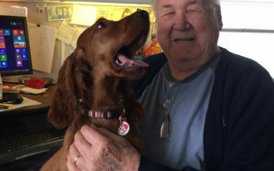 Seniors: How To Take Control Of Your Beloved Companion's Future